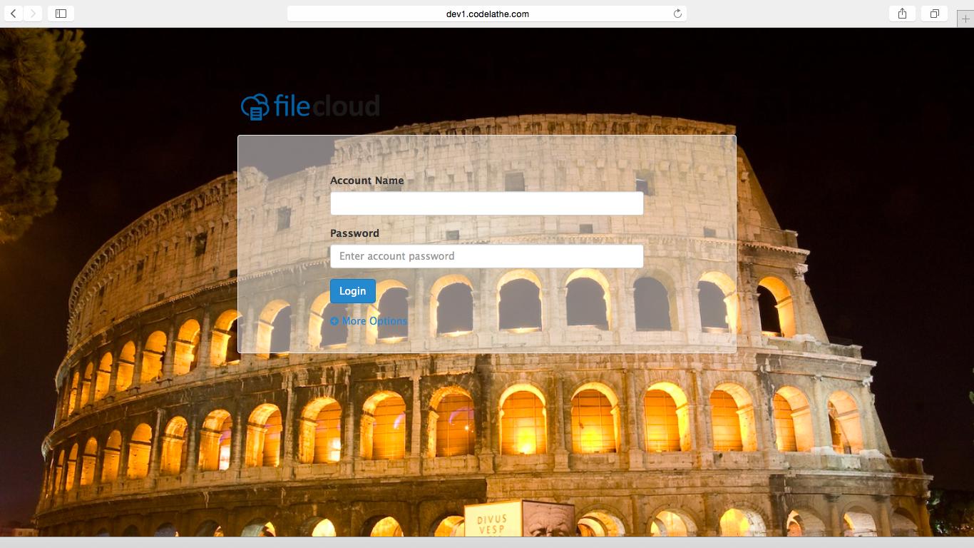 Increase your Brand Awareness with FileCloud – Customize